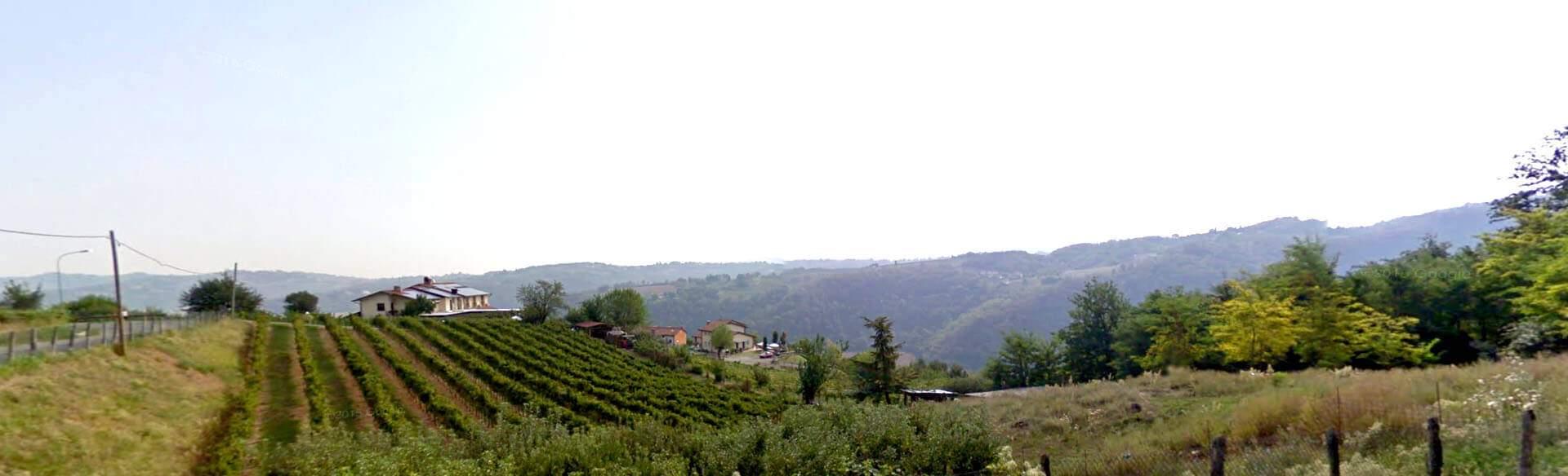 Trattoria la collinetta Altavilla Vicentina piatti tipici vicentini tradizionali